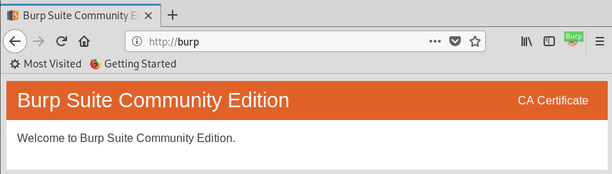 Adding Burp Suite CA Certificate to Kali Linux Certificate Store
